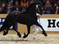 img_8380-wylster463