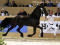 8128192-Phryso-f-Hyllested-Ostergaard