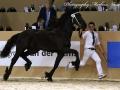 IMG_6052-155-Seiko-van-de-Demro-Stables