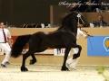 IMG_6227-180-Steffert-van-t-Wilbroek