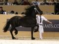 IMG_6301-189-Redbad-fan-Egypte
