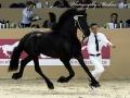 IMG_6317-189-Redbad-fan-Egypte