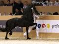 img_6482-202-Sander-van-t-Sonnis