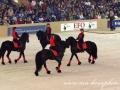img_7288-imp-tango