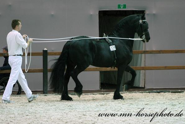 img_8784-tsjerk328